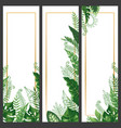 exotic leaves banner tropical monstera leaf palm vector image vector image