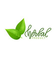 herbal product isolated green leaf logo lettering vector image