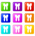 human tooth set 9 vector image vector image