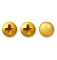 set gold screws bolts and rivets isolated vector image