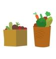 Vegetable box vector image