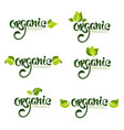 organic product natural and vegan lettering for vector image