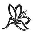 plyumeriya flower icon simple style vector image