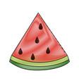 watermelon sweet fruit vector image vector image