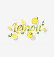 word lemon design in paper art style vector image