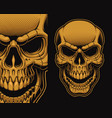 a a skull vector image vector image