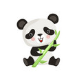 panda with pink cheeks sitting on floor and vector image