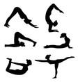 set slim sportive woman doin yoga vector image