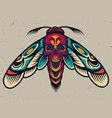 vintage colorful scary moth vector image vector image