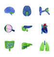 assembly of flat shading style icon human organs vector image vector image