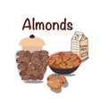 nutrition nuts food almonds healthy diet snack vector image vector image