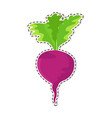 ripe beetroot flat isolated sticker or icon vector image vector image