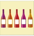 Set of colorful wine bottles with sparkles
