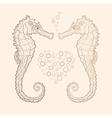 seahorse in love vector image