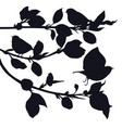 birds in the garden black silhouettes vector image vector image