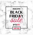 black friday sale banner design template with vector image vector image