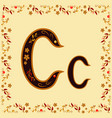 color letter c of the latin alphabet with a vector image