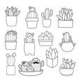 coloring book cactus vector image