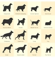 Dogs Breed Icon Set vector image