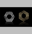 hexagon gold and silver 1 vector image vector image