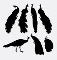 Peacock bird animal silhouette vector image vector image