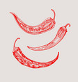 red hot chili peppers in vintage style salad vector image