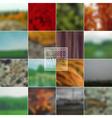 Set of blurred backgrounds landscape summer vector image