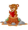 cute baby bear reading book on tree stump