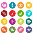 tropical sea shell icons set colorful circles vector image vector image