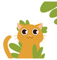 cat behind grass fluffy brooding yellow-eyed cat vector image vector image