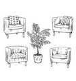 furniture armchairs and flowerpot illustration vector image
