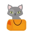 gray small cat green eyes yellow pet carrier vector image vector image