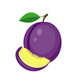 juicy plum with green leaf and plum slice vector image vector image