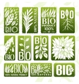 Natural and bio product labels badge and stikers vector image vector image