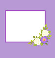purple frame with white rose flowers gentle daisy vector image vector image
