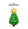 realistic pine cone year vector image vector image