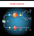 stellar evolution life cycle a star vector image vector image