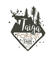 taiga forest eco park promo sign hand drawn vector image vector image