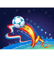 Final World Cup vector image
