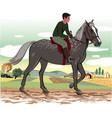 horse and rider vector image vector image