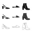 isolated object of footwear and woman logo set of vector image vector image