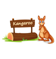 kangaroo and name plate vector image vector image