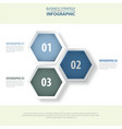 3 modern and clean hexagon design elements vector image