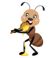 ant eating honey on white background vector image vector image