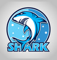 cartoon shark mascot with blue circle on gray vector image