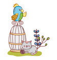 cute animals parrot on cat with ball nature vector image vector image