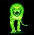 Green fire lion vector image vector image