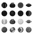 isolated object of sport and ball sign collection vector image