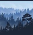 pine forest fog vector image