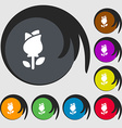 rose icon sign Symbols on eight colored buttons vector image